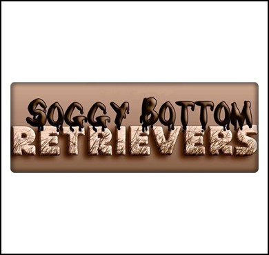 Soggy Bottom Retrievers
